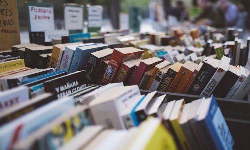 Les dix bienfaits de la lecture sur le cerveau